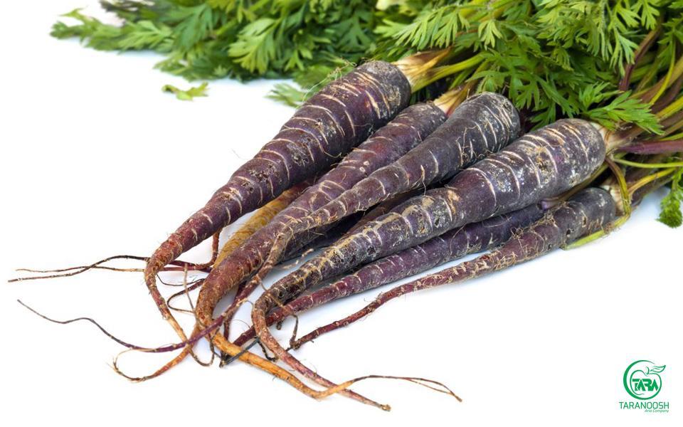 هویج سیاه