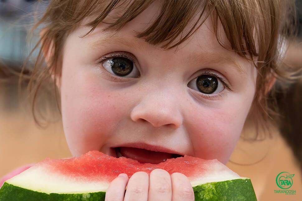 کنسانتره هندوانه