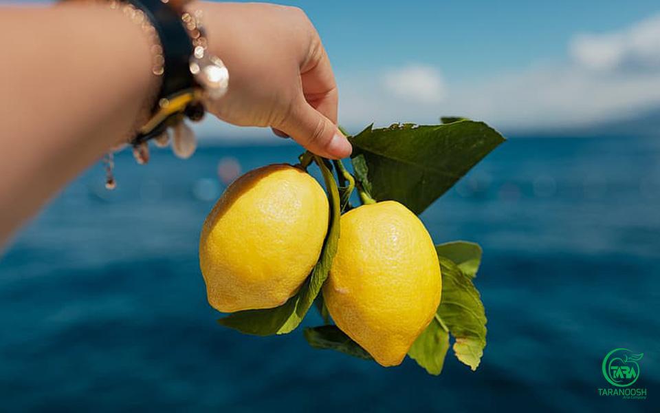 پوره لیمو